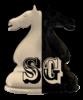 Schachverein Großschönau Logo